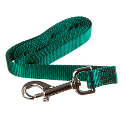 6ft Training Leash